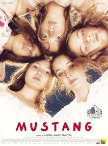 Mustang - l'affiche du film