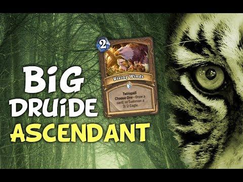Big druide dragon ascendant
